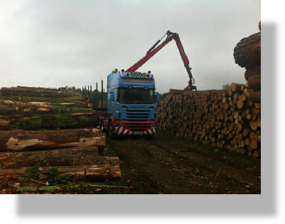 round timber haulage 1